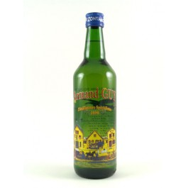 Guy Pontarlier-Anis Armand Guy 45% 70cl